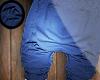 ▼| Harem x Shorts.