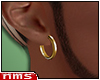NMS- Gold Earring R