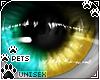 [Pets] Zorro | eyes v1