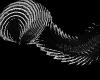 [FS] Tail