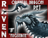 PET DRAGON FROSTBITE!