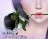 [E]*Black Rose*
