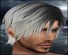 Light Grey Hair