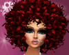 |*| BIG RED CURLY AFRO