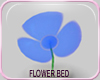 MLM Daisy Patch Blue