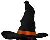 Wild Witch Hat