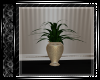 Gold Potted Plant