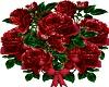 [A] roses 4u sticker