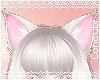 Neko Ears |Warm Silver