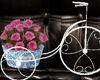 *Baroque Floral Bike