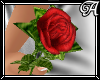 !A! Red Single Rose