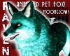 PET MOONGLOW FOX!