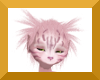 Anyskin cat ruff