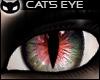 [SIN]Cat's Eye-RedGrey