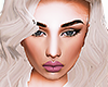 Blonde - Chin - Drv