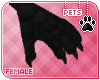 [Pets] Vimi | claws