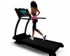 TDR Beach treadmill