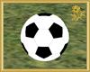 Park Soccer for Two