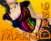Rainbow Zebra Stripe Top