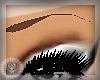 HLS|HLS EyeBrows|Brown2