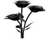 Black / Silver Rose