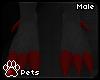 [Pets] Geno   feet M