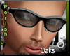 !P!Oaks.V2