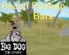 [BD] Beach Pushup Bars