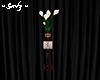 Calla Lilies with stand
