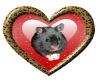Heart Hamster