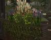 LKC Flower Box Garden