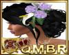 QMBR Anne WD Raven 4