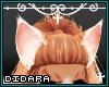 Chonky Cat| Amalia Ears