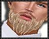 sexy beard blond