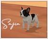 Ⓢ Mini Bulldog