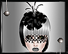 _Liax Veiled Hat