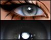 Realistic Grey Eyes