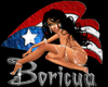 *KH* PR Boricua Flag Sti
