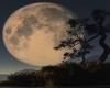 FD5 moon back drop