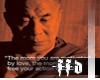 FFD Iconic PPL Lama v1