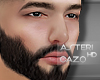cz ★ Ast.brows+beard