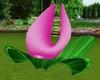 Pink Rose Lotus Chair