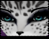 ♡|Bengal snow fur|F