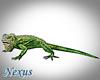 Animated Iguana
