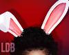 Rogey | Bunny Ears