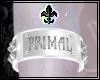 ⚜ Primal Band - Ivory