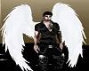 Always White Wings