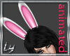 [Ly] Bunny Ears
