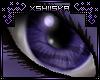 .xS. Kimia|Eyes ~F~