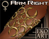 Designed Gold Arm Brace
